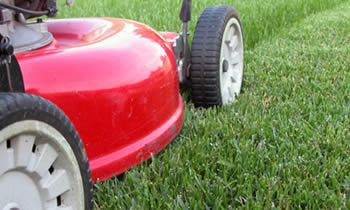 Lawn Care in Wellesley MA Lawn Care Services in Wellesley MA Quality Lawn Care in Wellesley MA